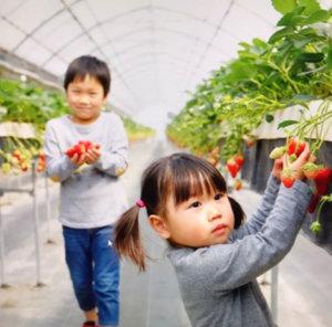 農家の嫁 長村さん 画像