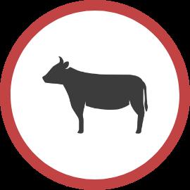 肉牛アイコン