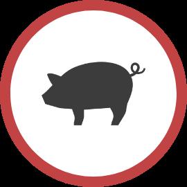 養豚アイコン