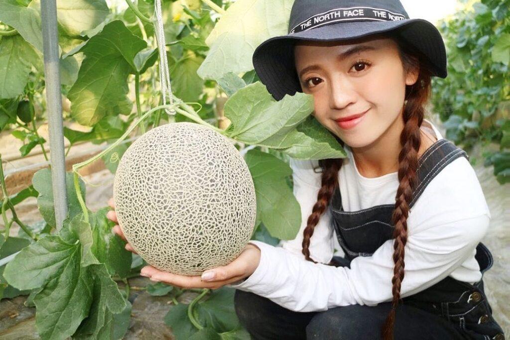 メロン 農業女子美人