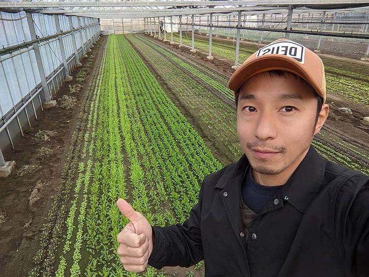 ベビーリーフとイケメン農家