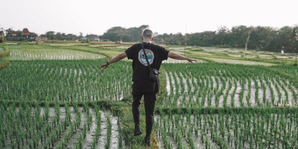 稲作農業をしている男性