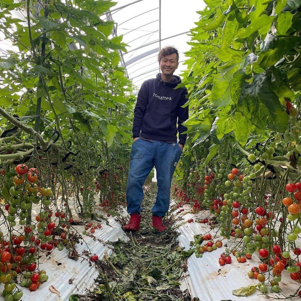 ミニトマト 農家