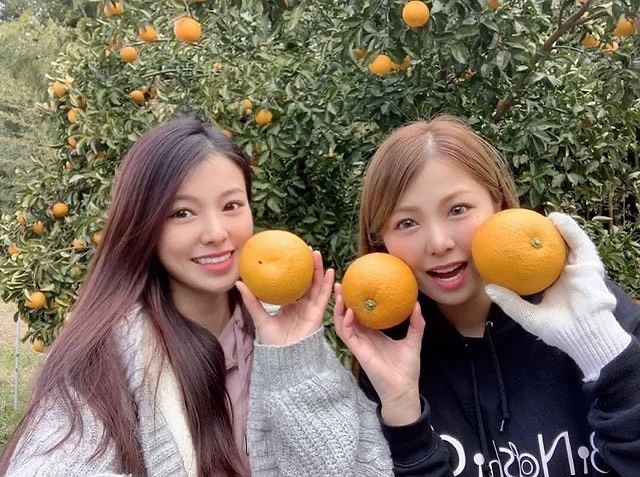 農家 稼ぐ 美人姉妹