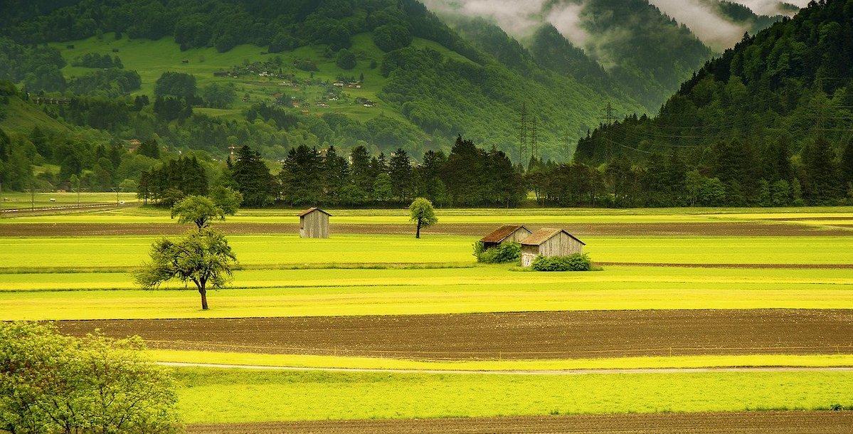 田舎の空気はキレイ
