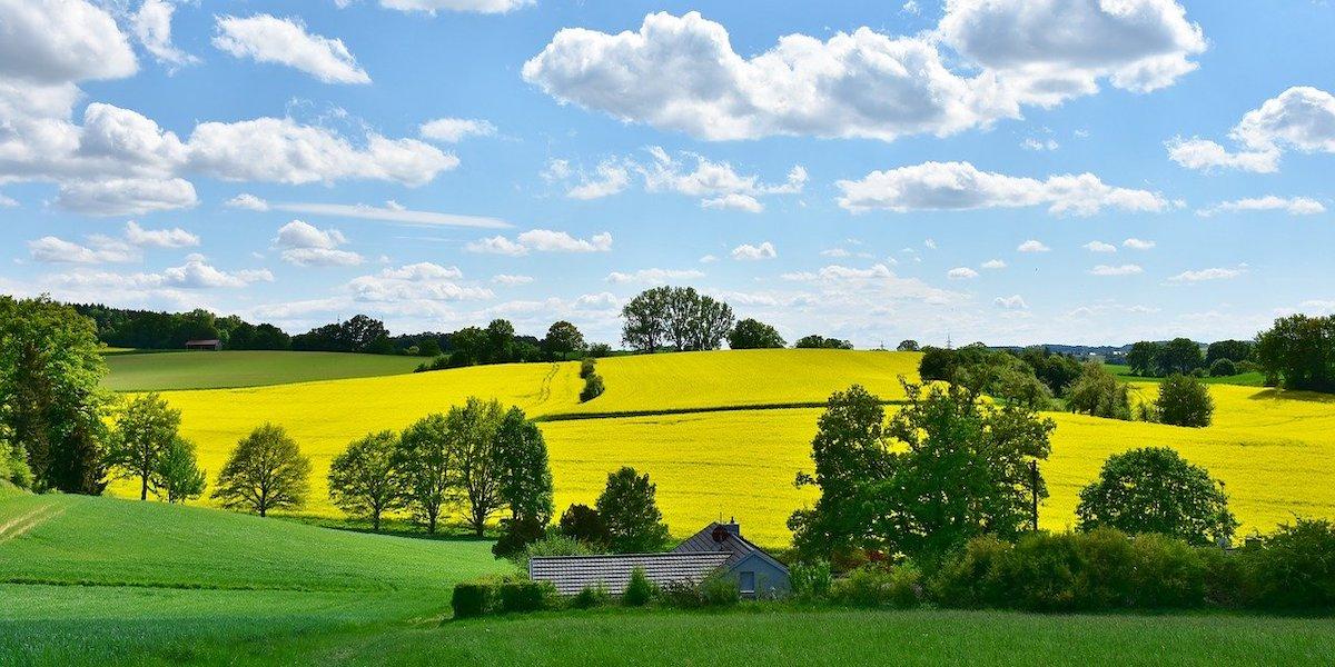 農家の家の特徴