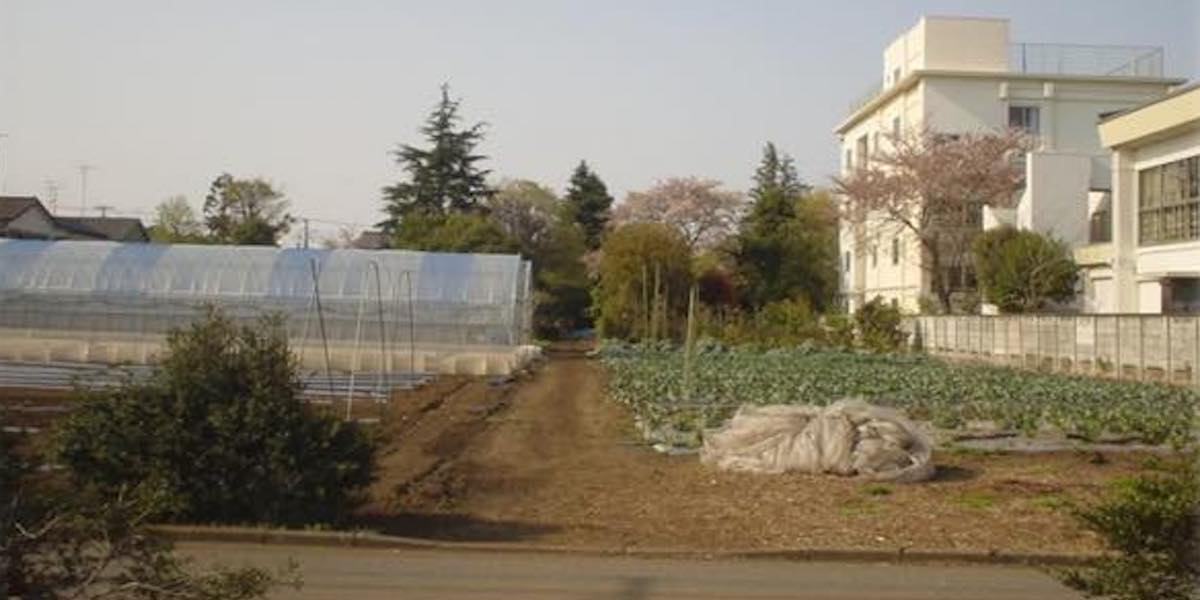 富澤さんが語る農業