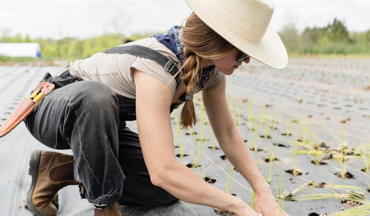 農作業が楽しい農家の嫁