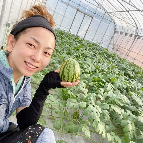 農業女子インタビュー かりゆしすいか