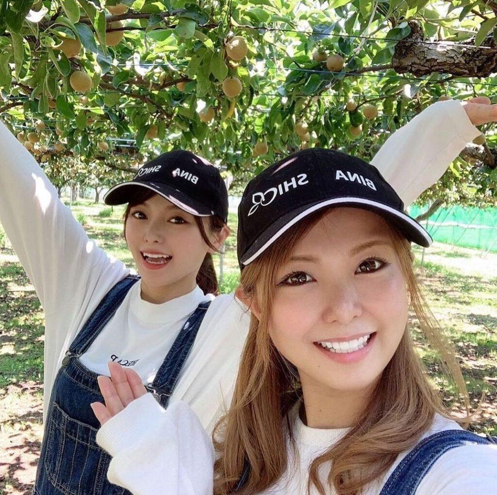 美人姉妹 梨農家