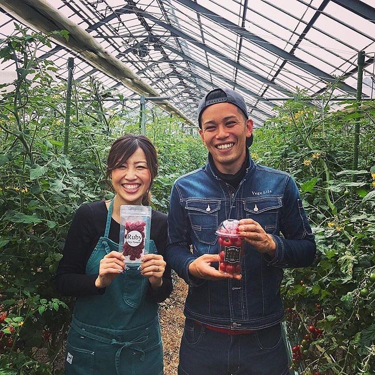 幸せな農家夫婦 ミニトマト
