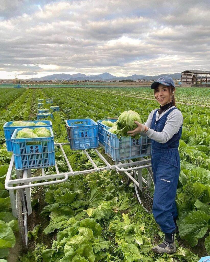 農家 レタス 美人農業女子