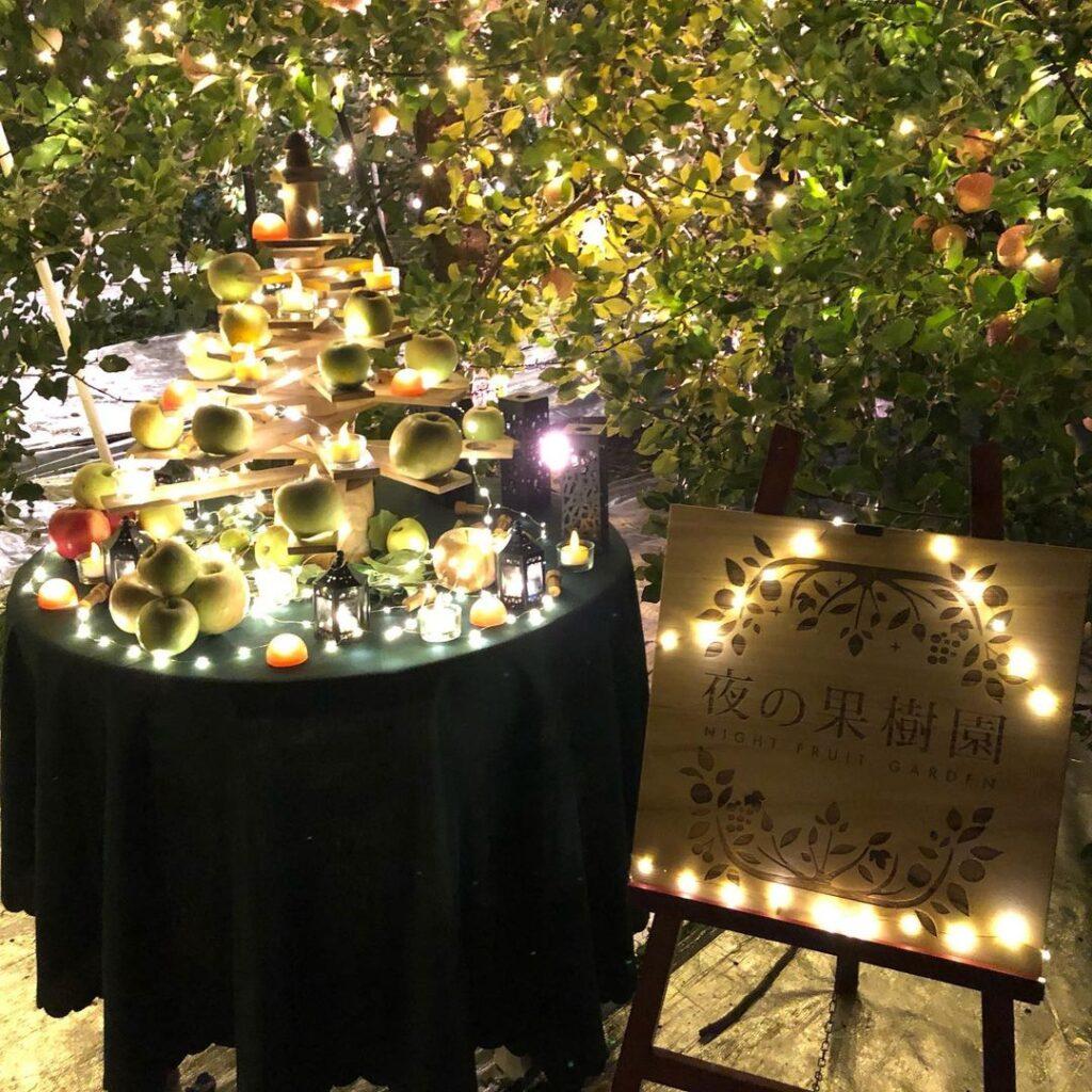 まるせい果樹園 夜の果樹園