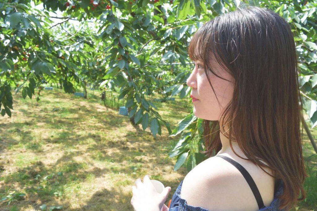 さくらんぼ山観光農園 北海道 フルーツ狩り
